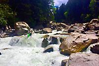 Tobi Wildwasser